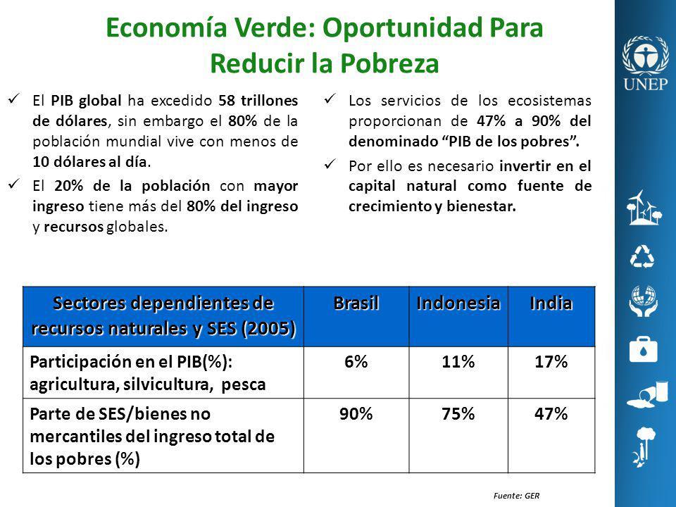 Economía Verde: Oportunidad Para Reducir la Pobreza Los servicios de los ecosistemas proporcionan de 47% a 90% del denominado PIB de los pobres. Por e