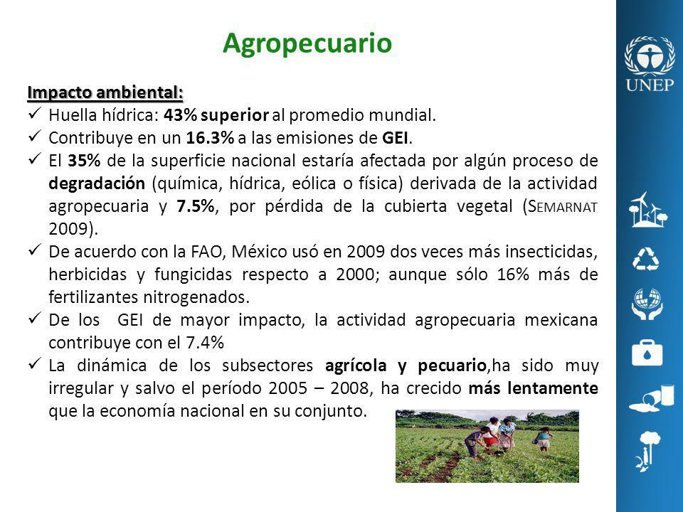 Agropecuario Impacto ambiental: Huella hídrica: 43% superior al promedio mundial. Contribuye en un 16.3% a las emisiones de GEI. El 35% de la superfic