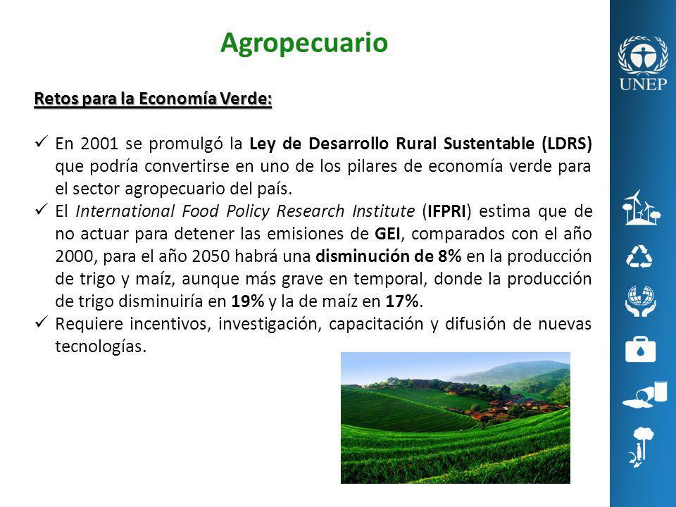 Agropecuario Retos para la Economía Verde: En 2001 se promulgó la Ley de Desarrollo Rural Sustentable (LDRS) que podría convertirse en uno de los pila