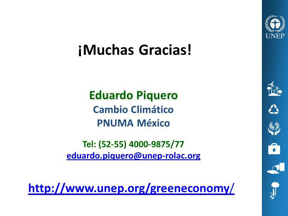 http://www.unep.org/greeneconomy/ ¡Muchas Gracias! Eduardo Piquero Cambio Climático PNUMA México Tel: (52-55) 4000-9875/77 eduardo.piquero@unep-rolac.