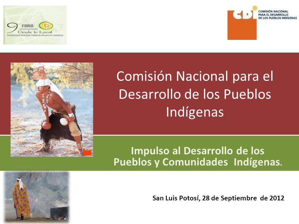 Comisión Nacional para el Desarrollo de los Pueblos Indígenas Impulso al Desarrollo de los Pueblos y Comunidades Indígenas.