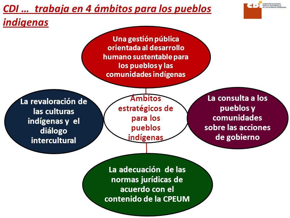 CDI … trabaja en 4 ámbitos para los pueblos indigenas