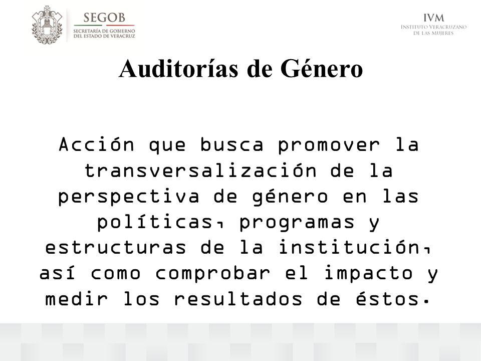 Auditorías de Género Acción que busca promover la transversalización de la perspectiva de género en las políticas, programas y estructuras de la insti