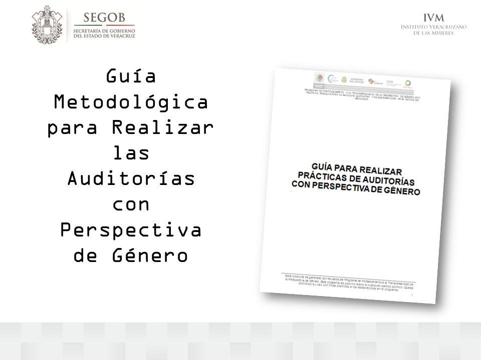 Guía Metodológica para Realizar las Auditorías con Perspectiva de Género