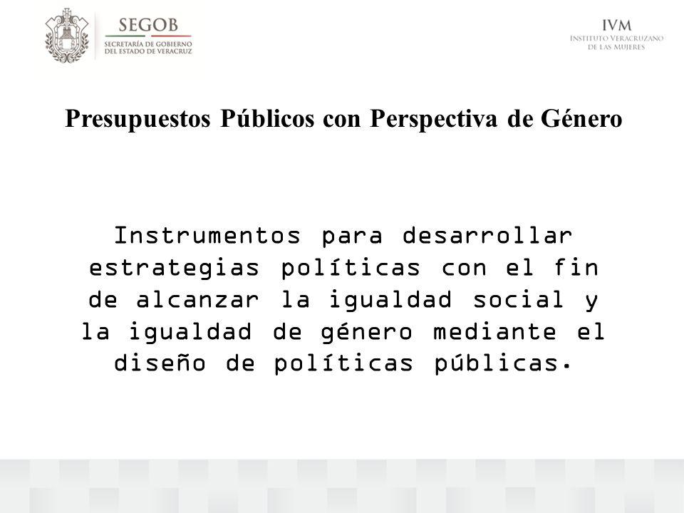 Instrumentos para desarrollar estrategias políticas con el fin de alcanzar la igualdad social y la igualdad de género mediante el diseño de políticas