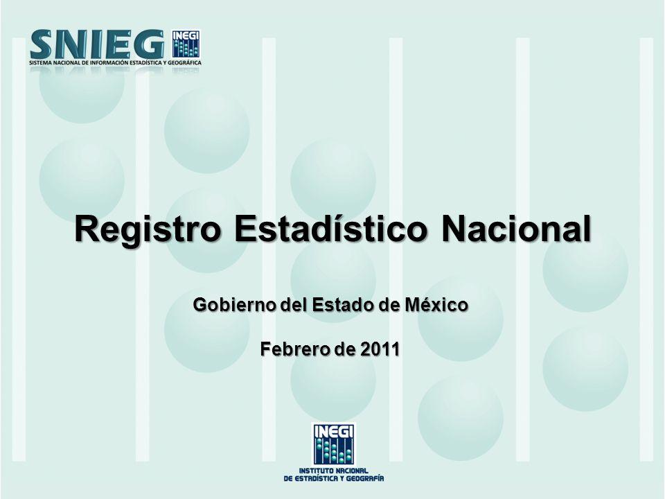 Gobierno del Estado de México Febrero de 2011 Registro Estadístico Nacional
