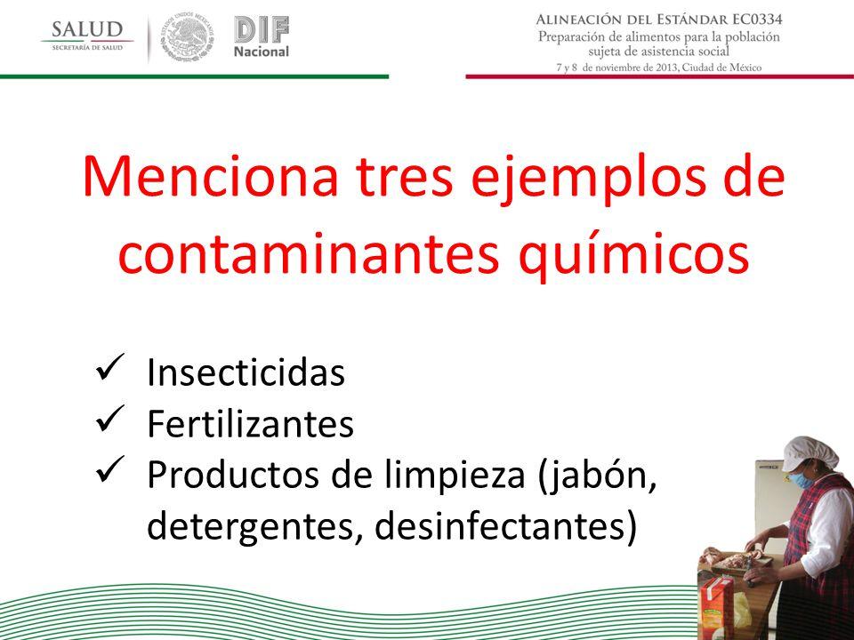 Menciona tres ejemplos de contaminantes químicos Insecticidas Fertilizantes Productos de limpieza (jabón, detergentes, desinfectantes)