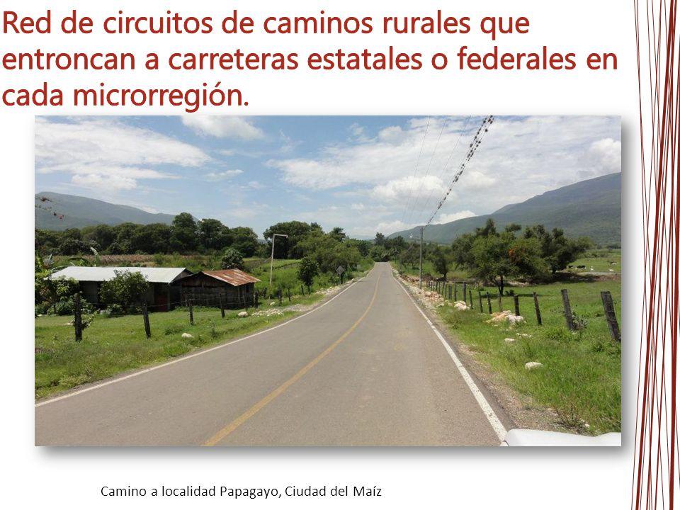 Camino a localidad Papagayo, Ciudad del Maíz