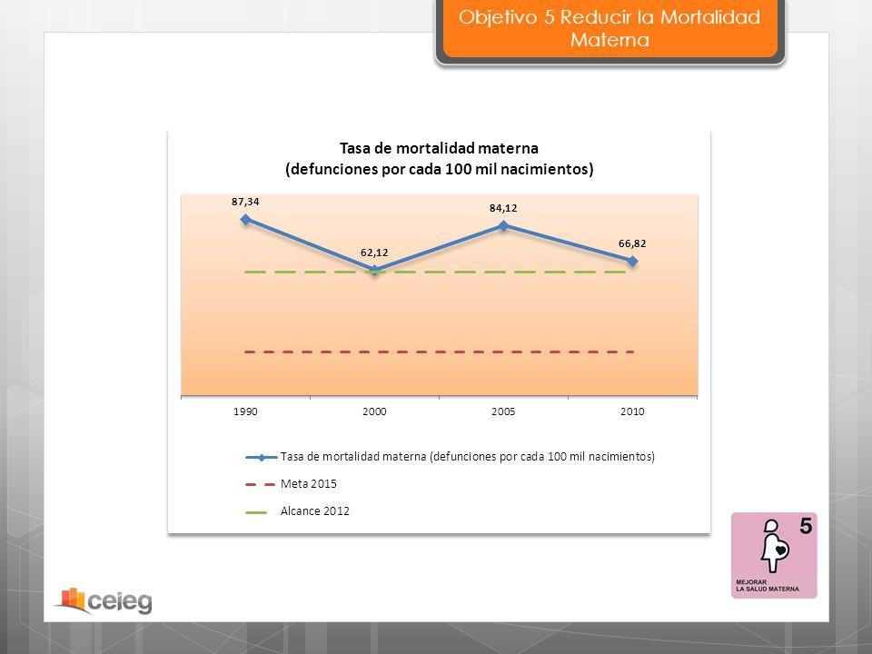 Objetivo 5 Reducir la Mortalidad Materna