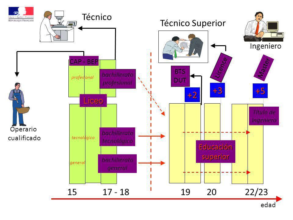 Liceo profesional tecnológico general Licence +2+3 +5 BTS DUT 1517 - 18192022/23 edad Educaciónsuperior bachillerato profesional bachillerato general