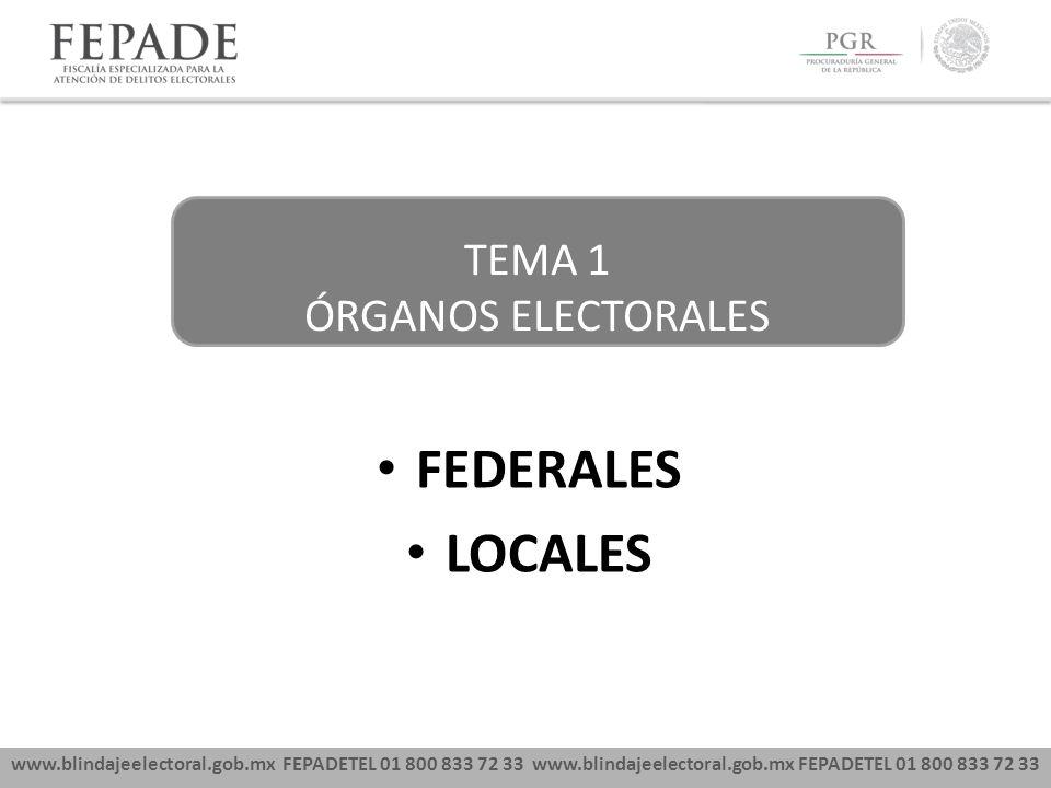 www.blindajeelectoral.gob.mx FEPADETEL 01 800 833 72 33 FEDERALES LOCALES TEMA 1 ÓRGANOS ELECTORALES