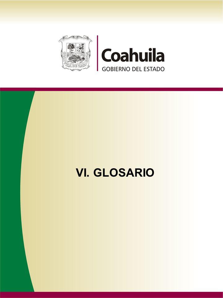 VI. GLOSARIO