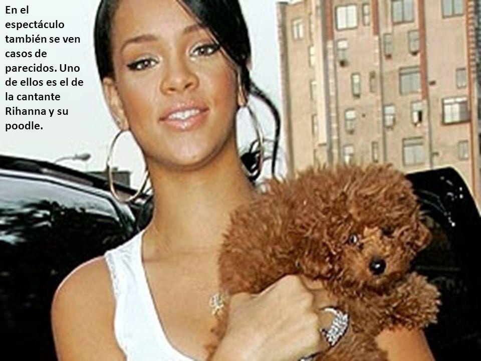 En el espectáculo también se ven casos de parecidos. Uno de ellos es el de la cantante Rihanna y su poodle.