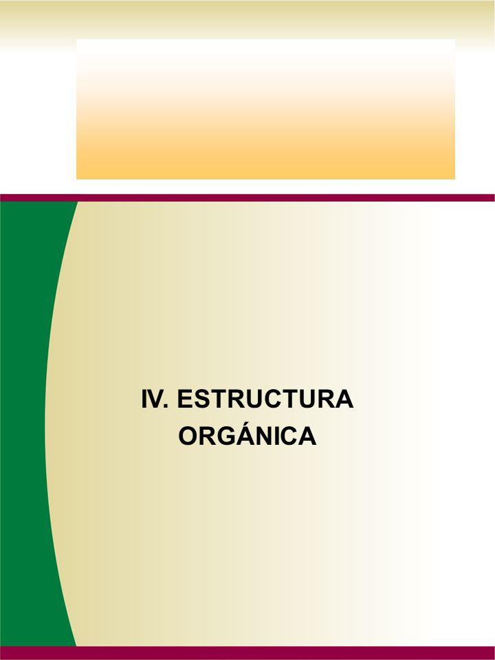 IV. ESTRUCTURA ORGÁNICA