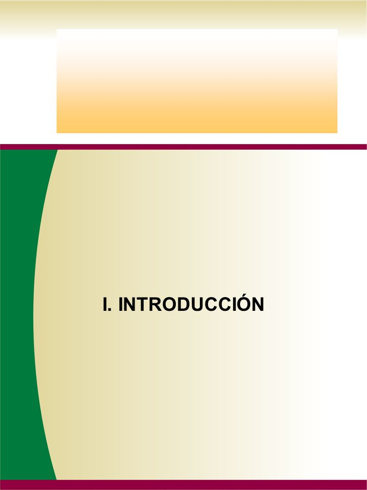 MANUAL DE ORGANIZACION SUST.PAG. DE FECHA DIA MES AÑO DIRECCIÓN DE ADMINISTRACIÓN Y FINANZAS I.