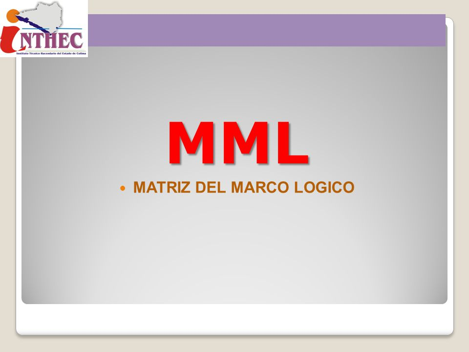 MML MATRIZ DEL MARCO LOGICO