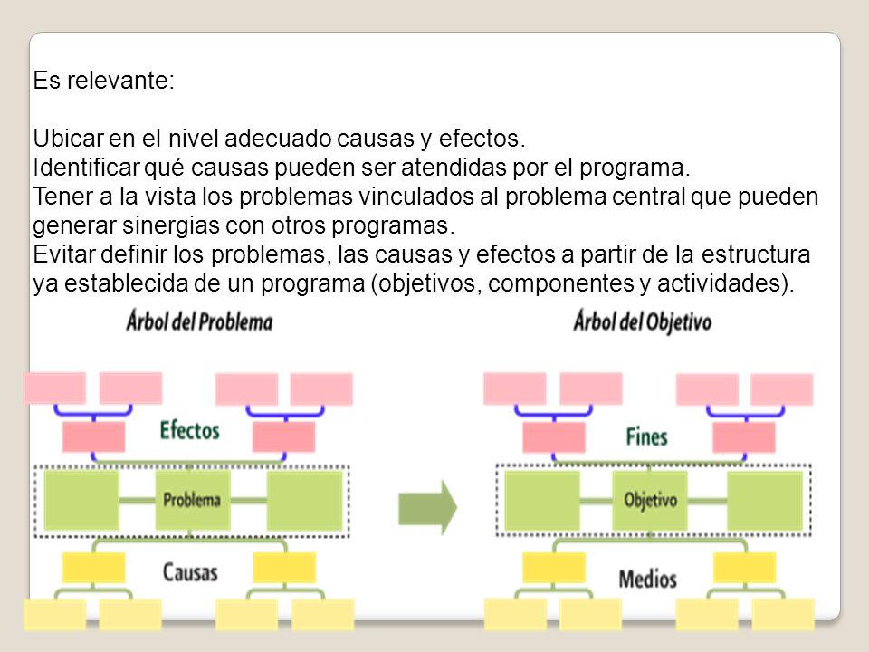 Es relevante: Ubicar en el nivel adecuado causas y efectos. Identificar qué causas pueden ser atendidas por el programa. Tener a la vista los problema
