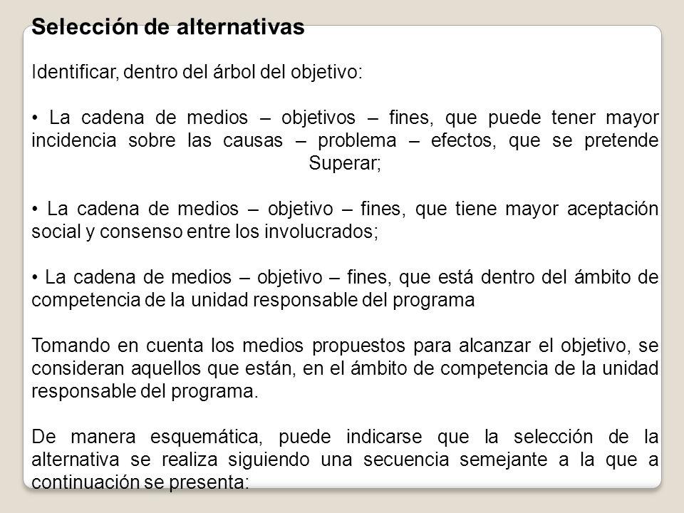 Selección de alternativas Identificar, dentro del árbol del objetivo: La cadena de medios – objetivos – fines, que puede tener mayor incidencia sobre