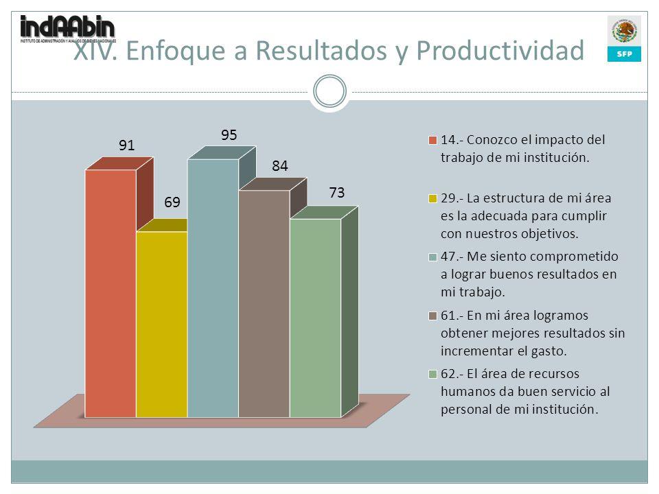 XIV. Enfoque a Resultados y Productividad