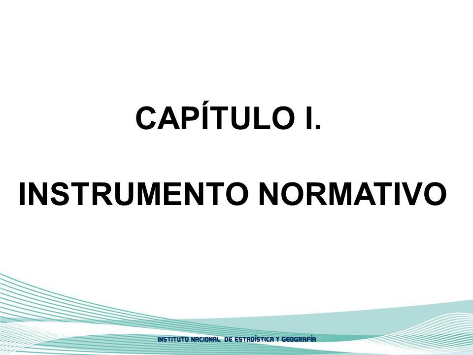 CAPÍTULO I. INSTRUMENTO NORMATIVO