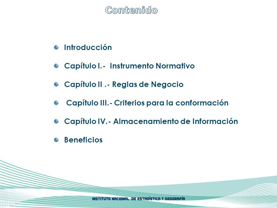 Introducción Capítulo I.- Instrumento Normativo Capítulo II.- Reglas de Negocio Capítulo III.- Criterios para la conformación Capítulo IV.- Almacenami