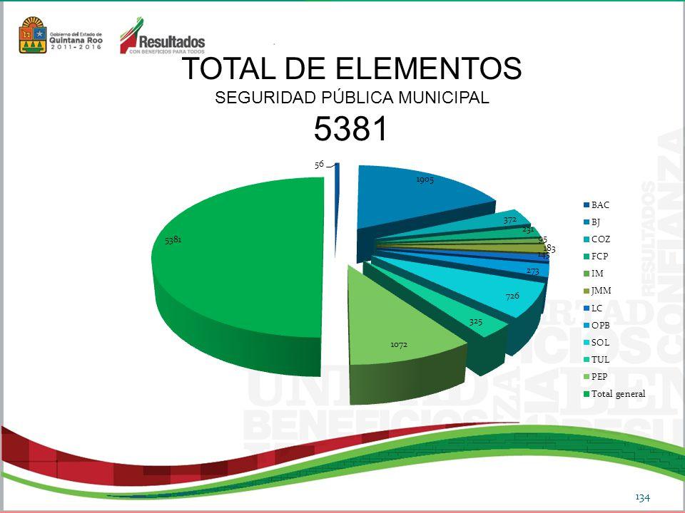 134 TOTAL DE ELEMENTOS SEGURIDAD PÚBLICA MUNICIPAL 5381