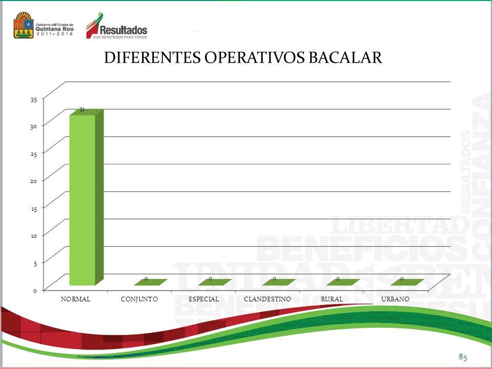 85 DIFERENTES OPERATIVOS BACALAR