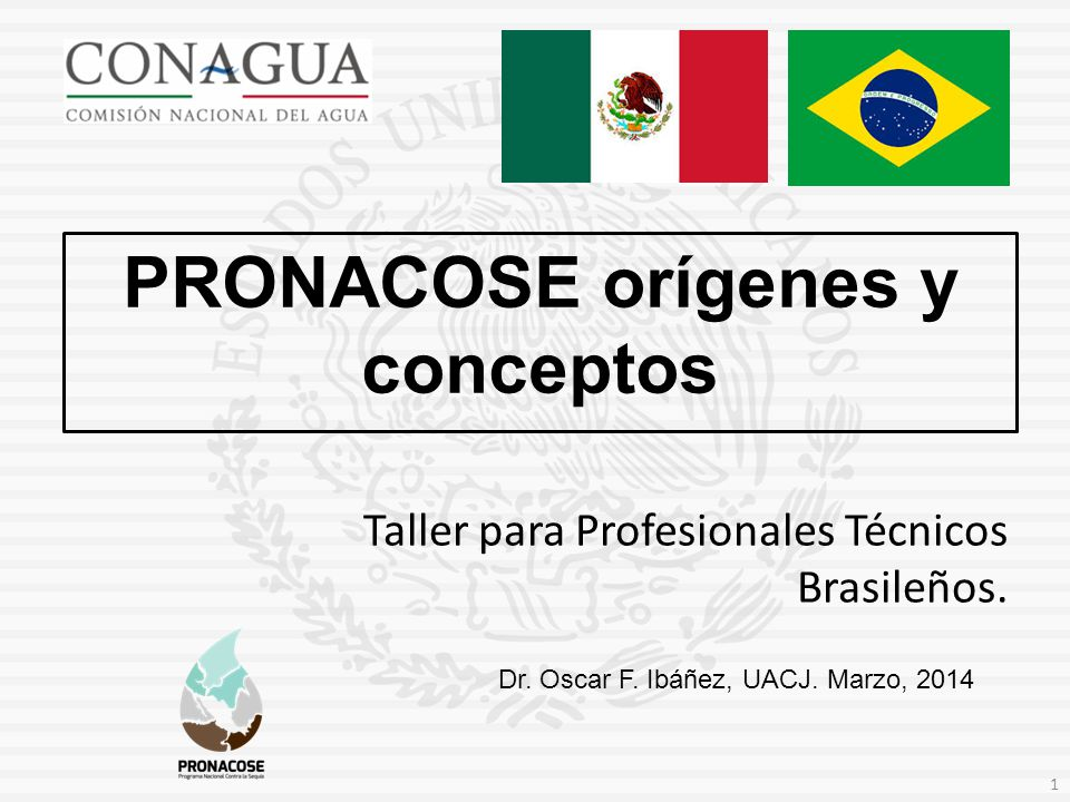 Dr. Oscar F. Ibáñez, UACJ. Marzo, 2014 PRONACOSE orígenes y conceptos 1 Taller para Profesionales Técnicos Brasileños.