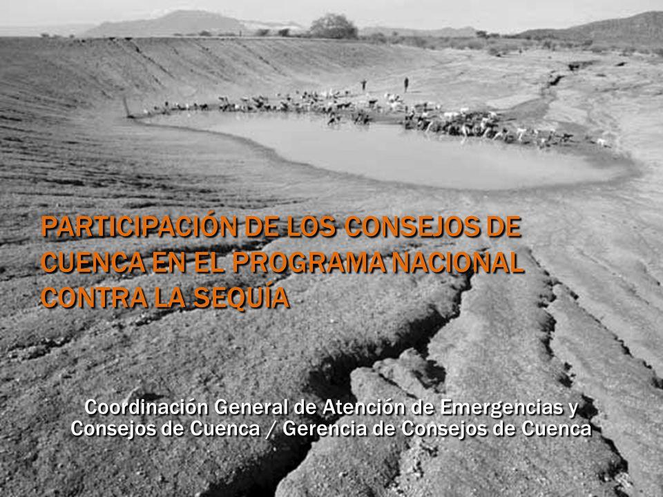 PARTICIPACIÓN DE LOS CONSEJOS DE CUENCA EN EL PROGRAMA NACIONAL CONTRA LA SEQUÍA Coordinación General de Atención de Emergencias y Consejos de Cuenca