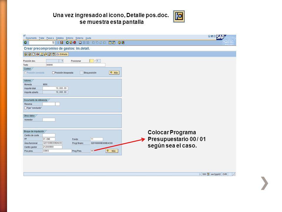 Colocar Programa Presupuestario 00 / 01 según sea el caso. Una vez ingresado al icono, Detalle pos.doc. se muestra esta pantalla