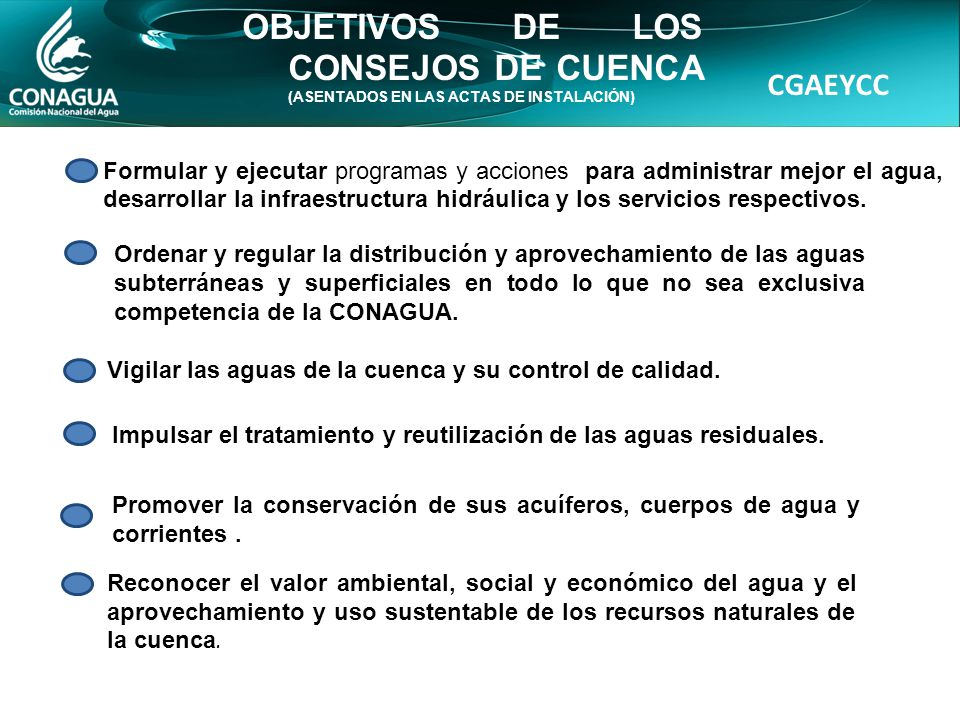 CGAEYCC OBJETIVOS DE LOS CONSEJOS DE CUENCA (ASENTADOS EN LAS ACTAS DE INSTALACIÓN) Vigilar las aguas de la cuenca y su control de calidad.