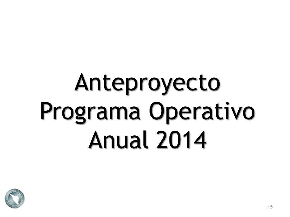 Anteproyecto Programa Operativo Anual 2014 45