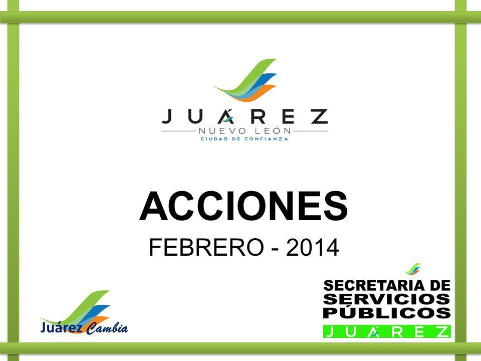 ACCIONES FEBRERO - 2014 Juárez Cambia