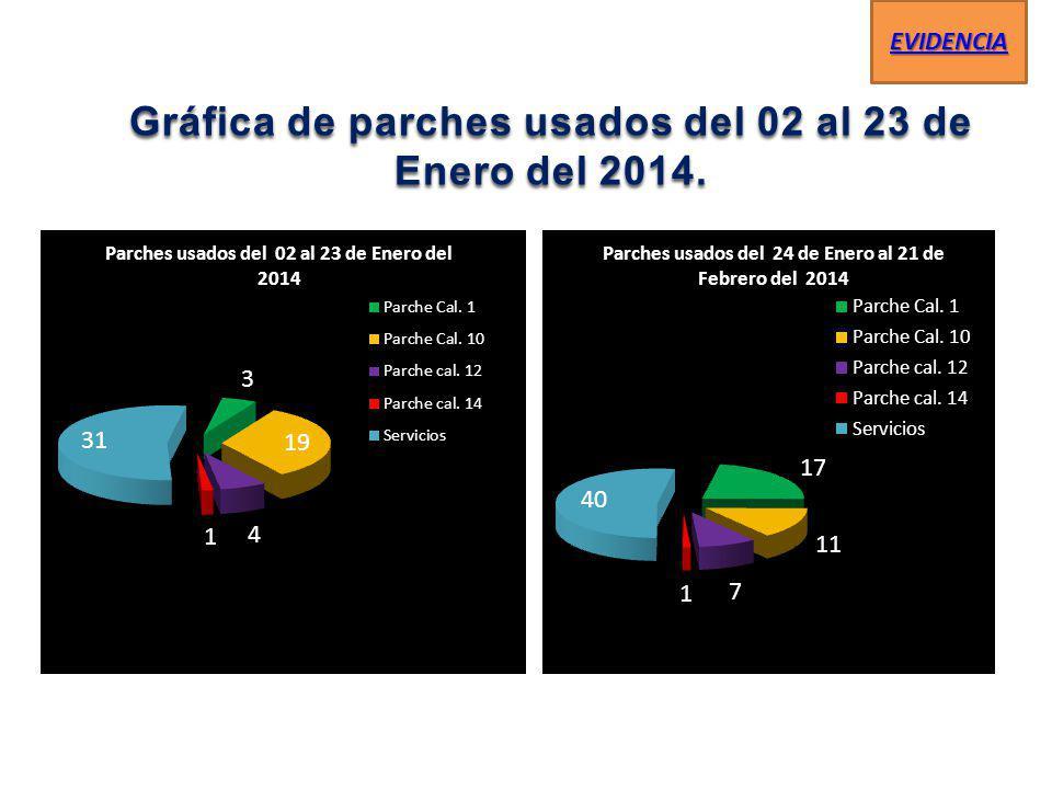 Gráfica de parches usados del 02 al 23 de Enero del 2014. Gráfica de parches usados del 02 al 23 de Enero del 2014. EVIDENCIA