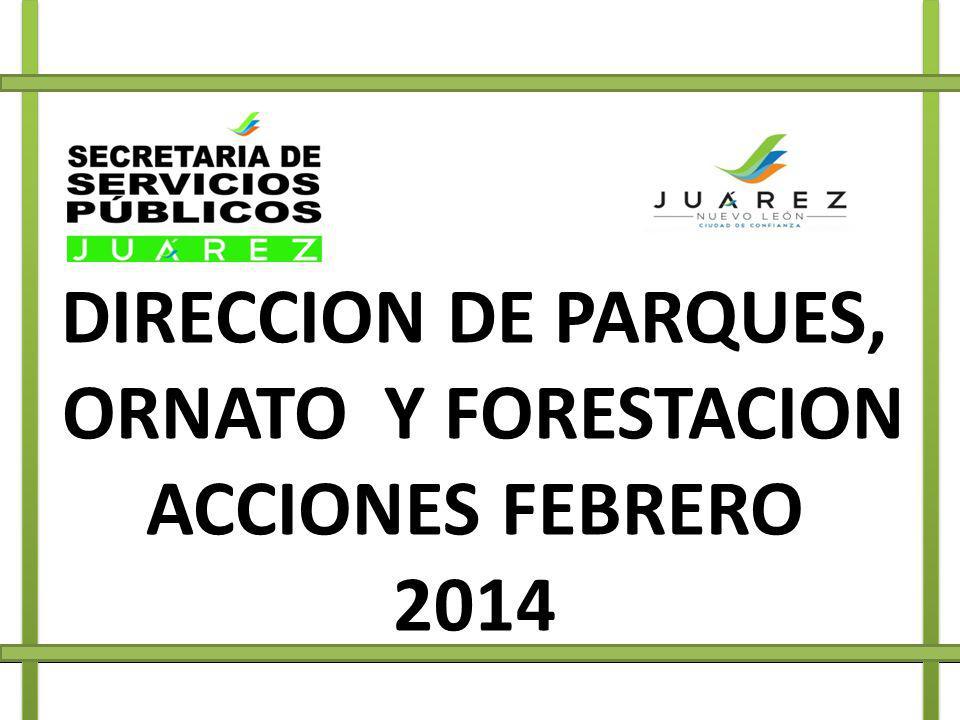 DIRECCION DE PARQUES, ORNATO Y FORESTACION ACCIONES FEBRERO 2014