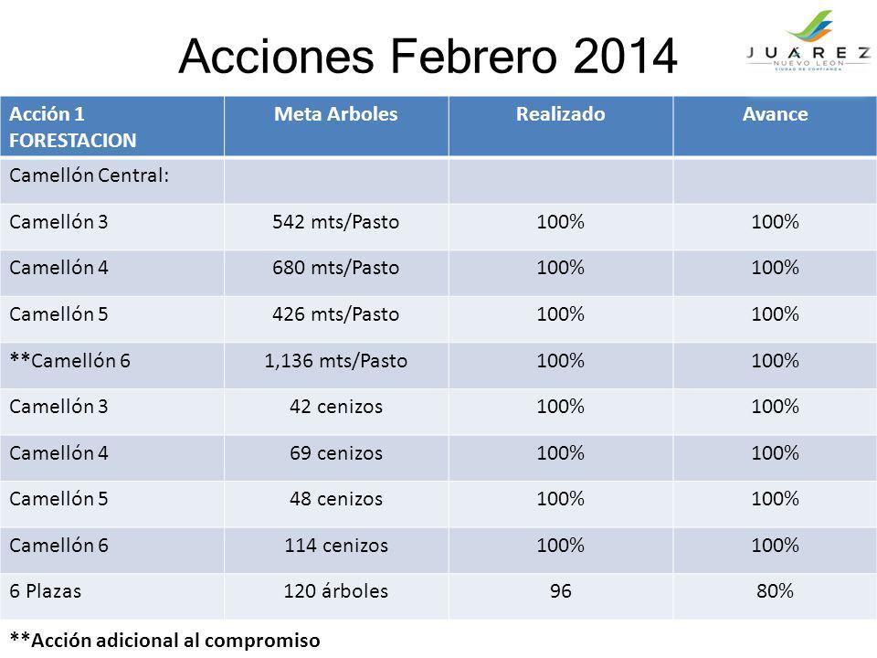 Acciones Febrero 2014 Acción 1 FORESTACION Meta ArbolesRealizadoAvance Camellón Central: Camellón 3542 mts/Pasto100% Camellón 4680 mts/Pasto100% Camel
