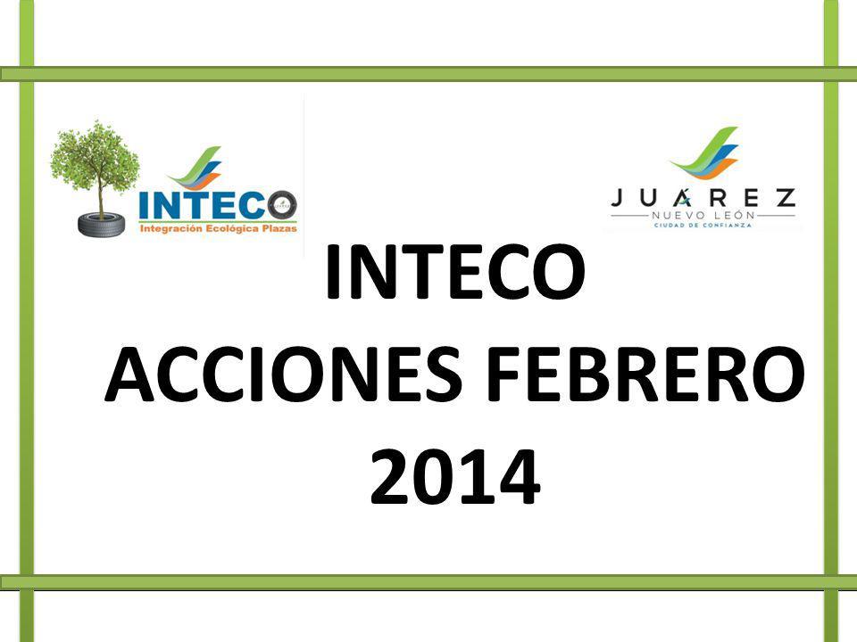 INTECO ACCIONES FEBRERO 2014