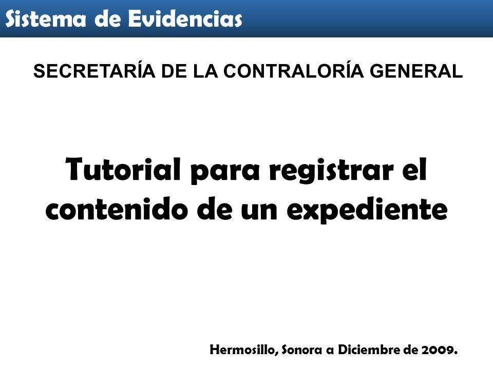 Tutorial para registrar el contenido de un expediente Sistema de Evidencias Hermosillo, Sonora a Diciembre de 2009.