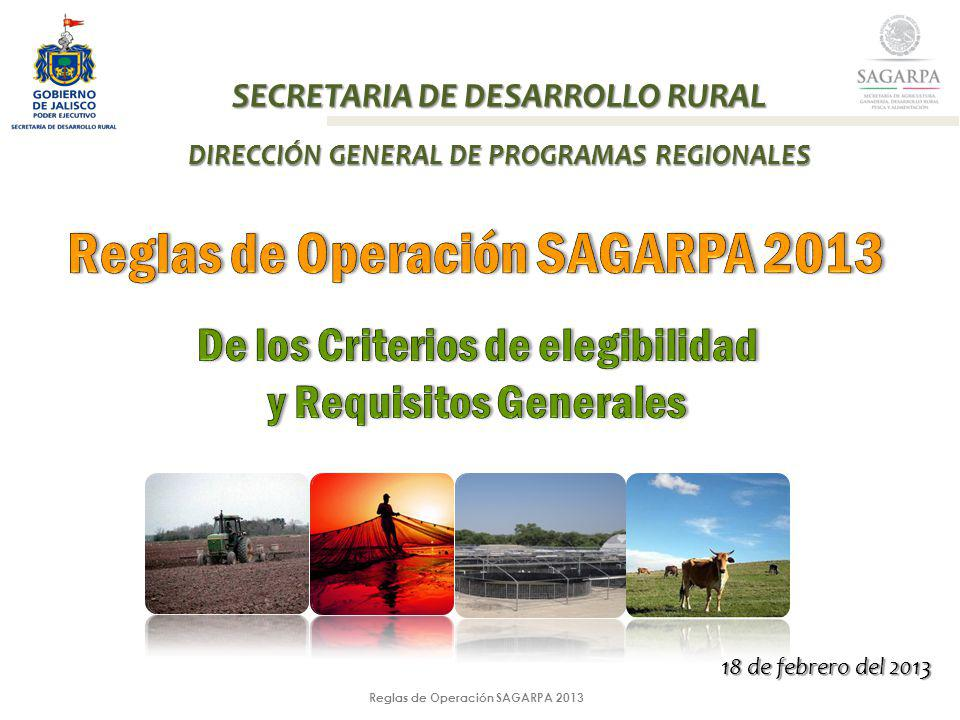 Reglas de Operación SAGARPA 2013 SECRETARIA DE DESARROLLO RURAL DIRECCIÓN GENERAL DE PROGRAMAS REGIONALES 18 de febrero del 2013