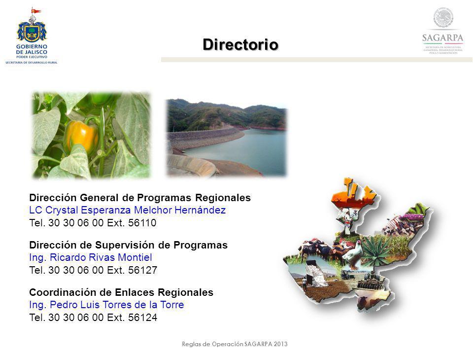Reglas de Operación SAGARPA 2013 Directorio Dirección General de Programas Regionales LC Crystal Esperanza Melchor Hernández Tel. 30 30 06 00 Ext. 561