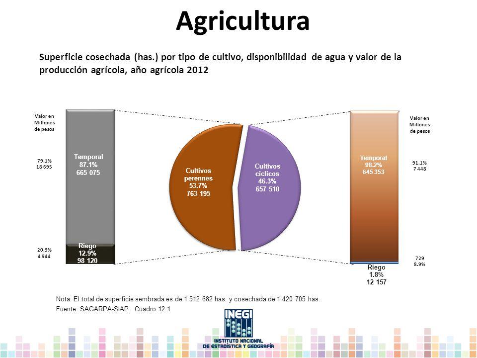 Nota: El total de superficie sembrada es de 1 512 682 has. y cosechada de 1 420 705 has. Fuente: SAGARPA-SIAP. Cuadro 12.1 Agricultura Superficie cose