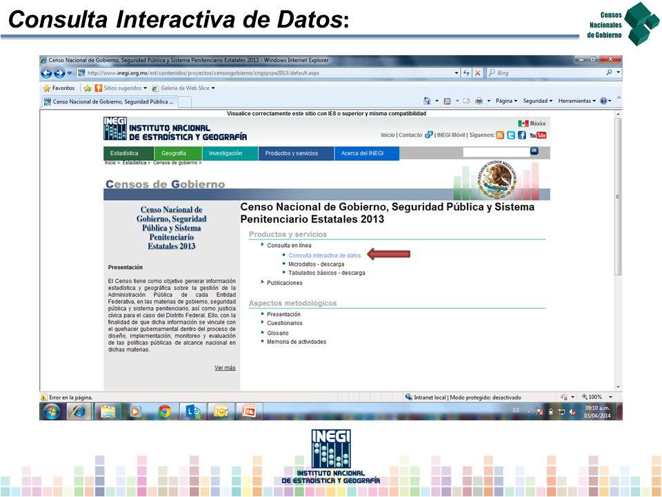 Consulta Interactiva de Datos :