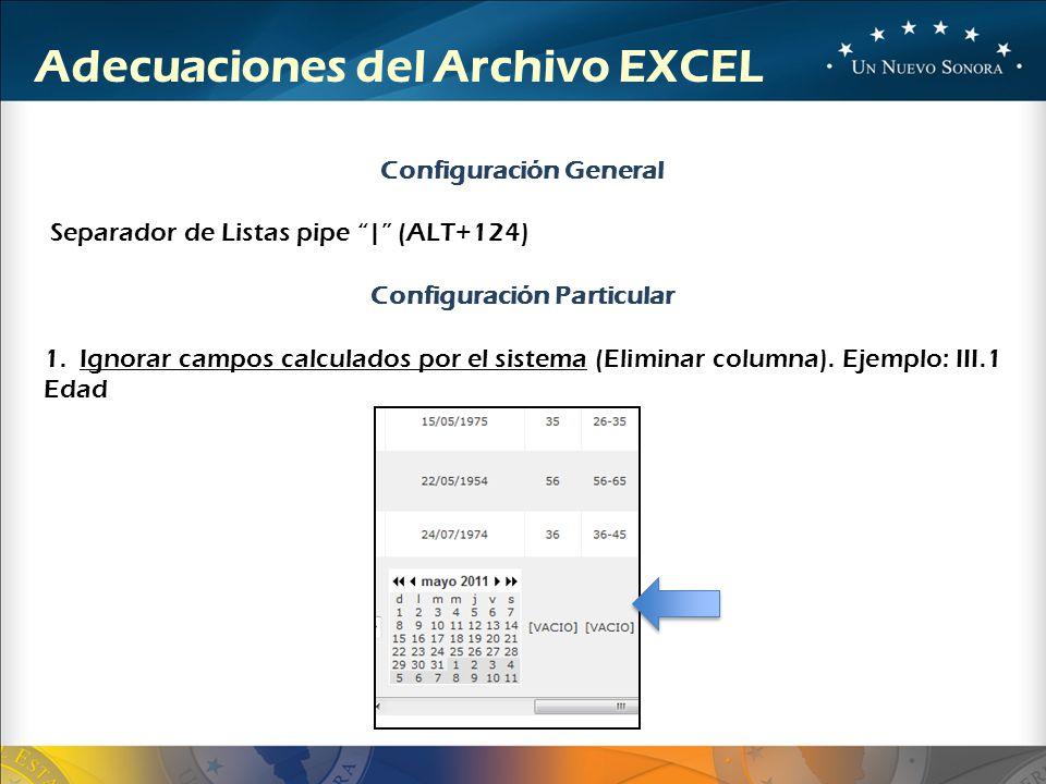 Adecuaciones del Archivo EXCEL Configuración General Separador de Listas pipe   (ALT+124) Configuración Particular 1. Ignorar campos calculados por el