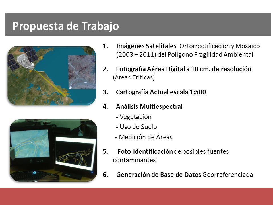 1.Imágenes Satelitales Ortorrectificación y Mosaico (2003 – 2011) del Polígono Fragilidad Ambiental 2. Fotografía Aérea Digital a 10 cm. de resolución