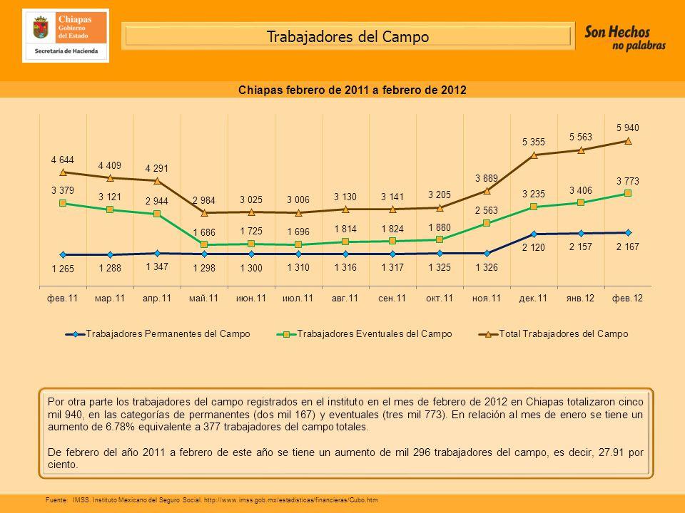 Por otra parte los trabajadores del campo registrados en el instituto en el mes de febrero de 2012 en Chiapas totalizaron cinco mil 940, en las categorías de permanentes (dos mil 167) y eventuales (tres mil 773).