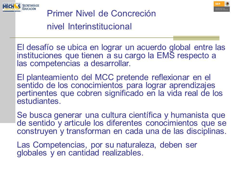 Primer Nivel de Concreción nivel Interinstitucional El desafío se ubica en lograr un acuerdo global entre las instituciones que tienen a su cargo la EMS respecto a las competencias a desarrollar.