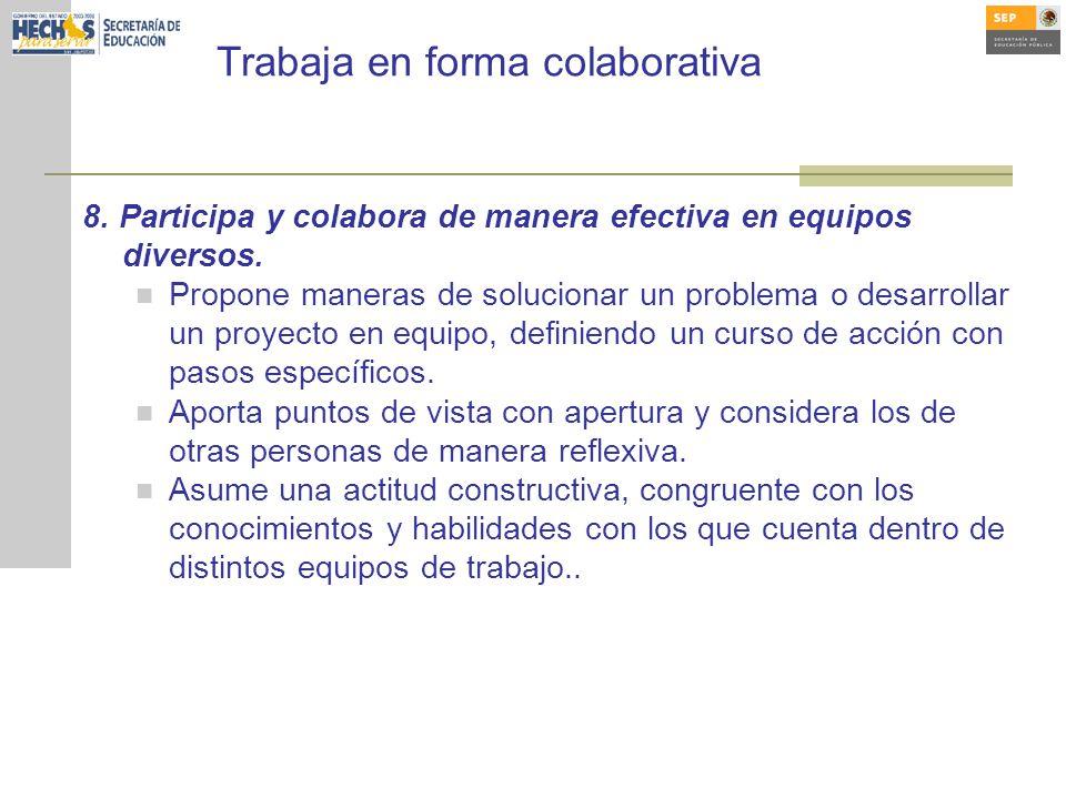 Trabaja en forma colaborativa 8.Participa y colabora de manera efectiva en equipos diversos.