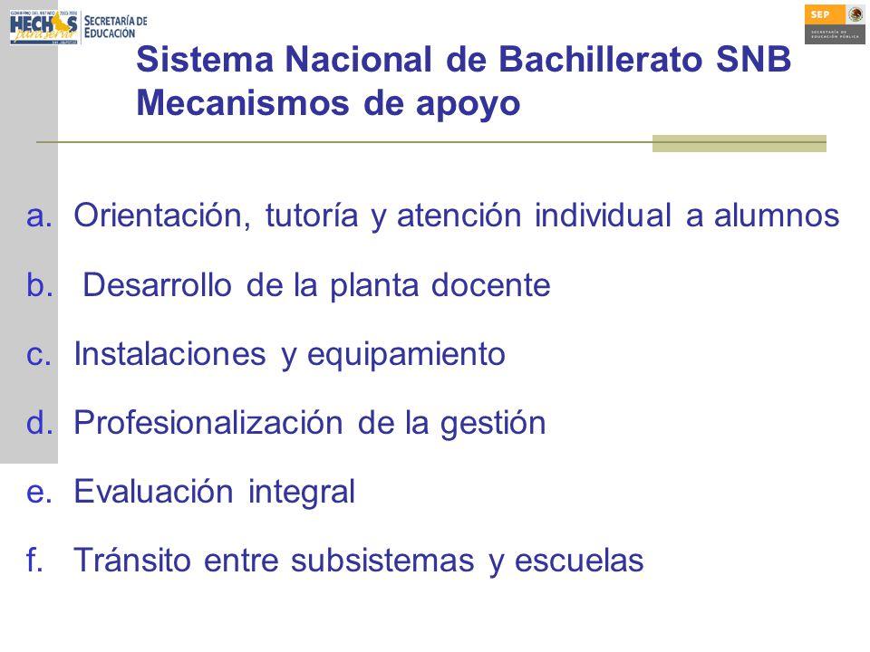 Sistema Nacional de Bachillerato SNB Mecanismos de apoyo a.Orientación, tutoría y atención individual a alumnos b. Desarrollo de la planta docente c.I