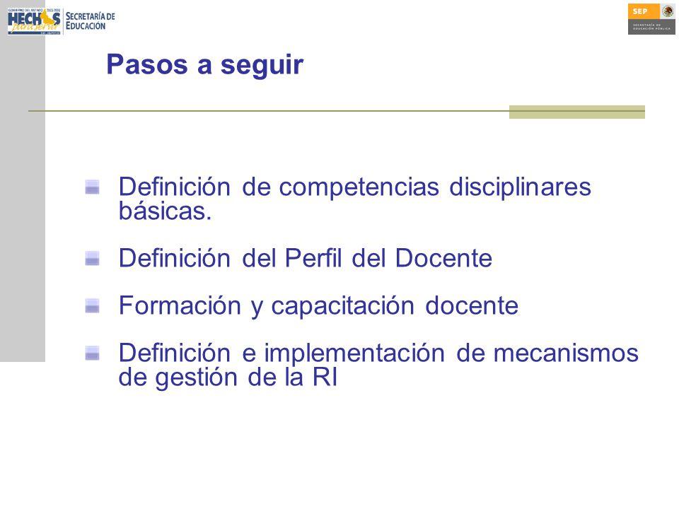 Pasos a seguir Definición de competencias disciplinares básicas. Definición del Perfil del Docente Formación y capacitación docente Definición e imple