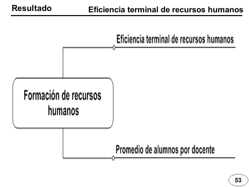 Resultado 53 Eficiencia terminal de recursos humanos